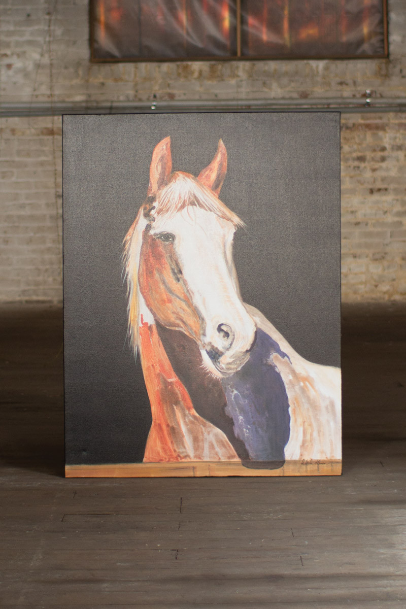 OIL PAINTING PRETTY BOY HORSE