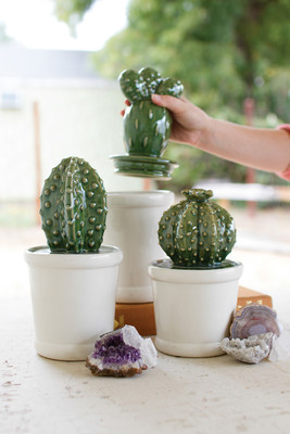 set of three ceramic cactus canisters