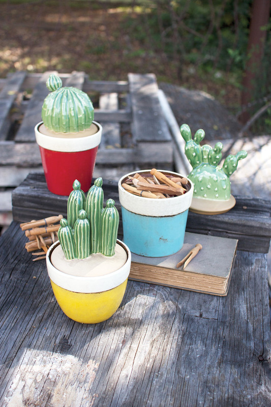 CACTUS CANISTERS