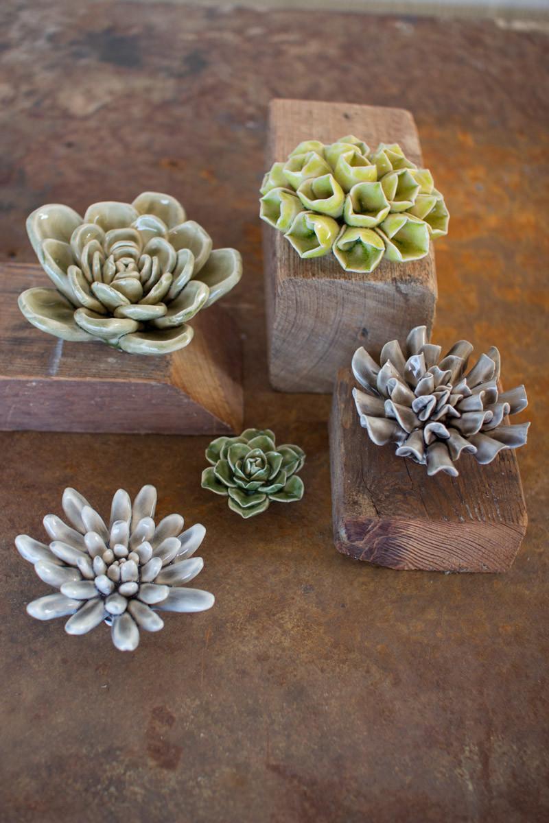 Set Of 5 Greys Amp Greens Ceramic Succulents