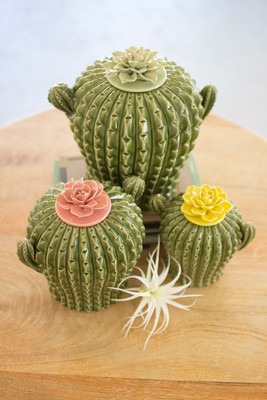 CACTUS CANISTERS W/ FLOWER TOPS