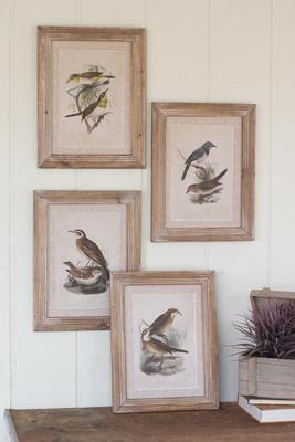set of 4 framed prints under glass - birds
