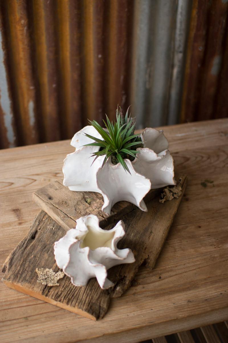 Set Of 2 Organic Ceramic Planters