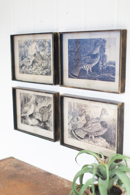 Set of 4 Antiqued Black and White Bird Prints Under Glass