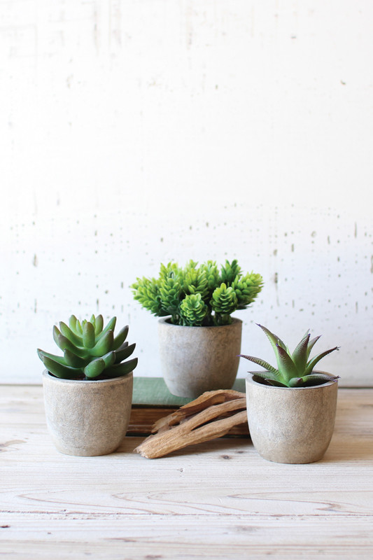set of 3 artificial succulents in round pots
