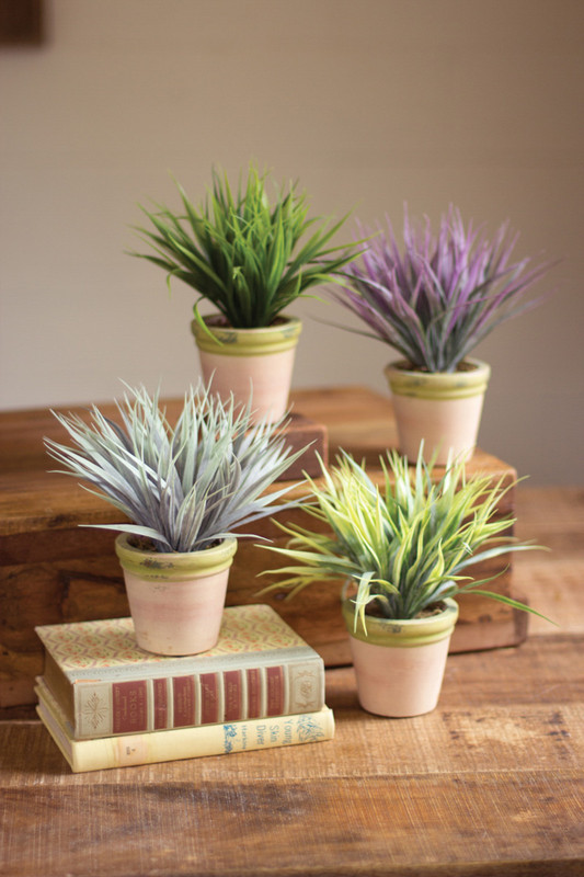 set of four spring grasses in a round clay pot