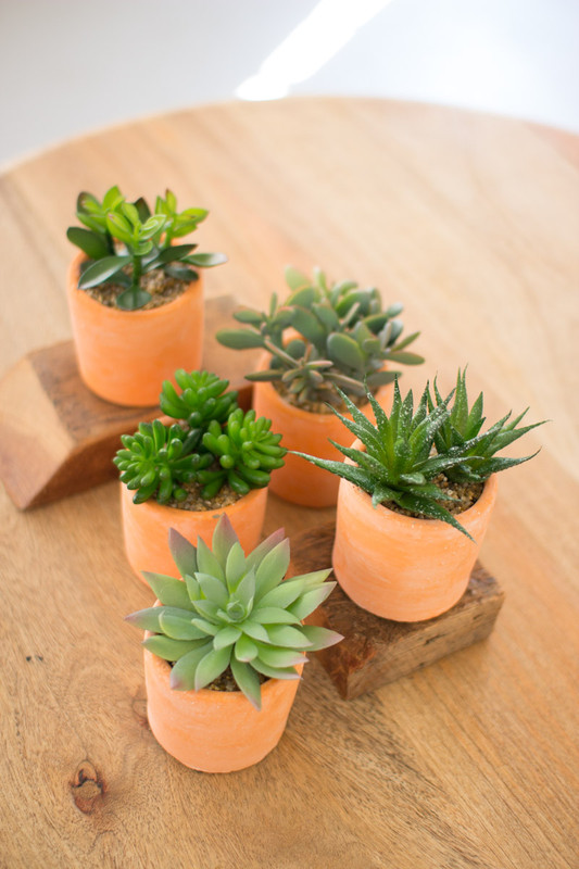 set of 5 artificial succulents
