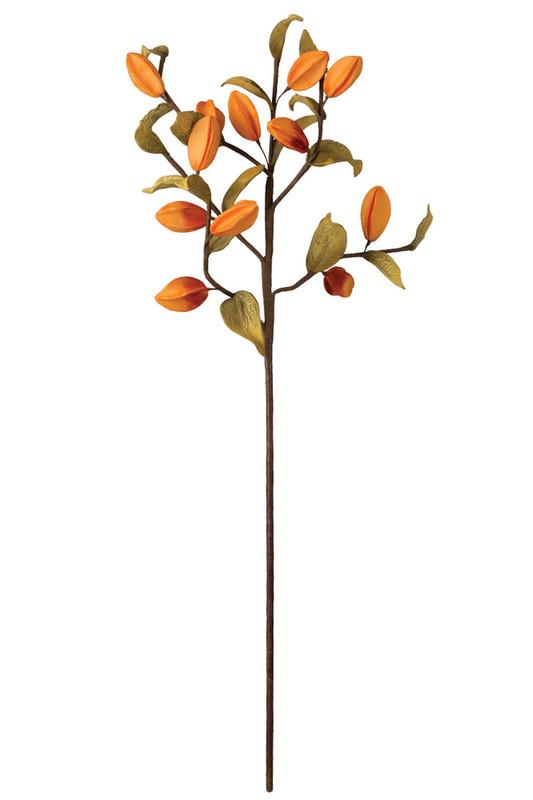 set of 6 botanica #2018