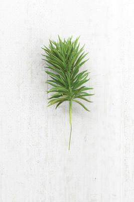 artificial pine stem