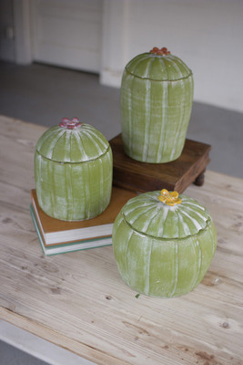CLAY CACTUS CANISTERS WITH FLOWER T