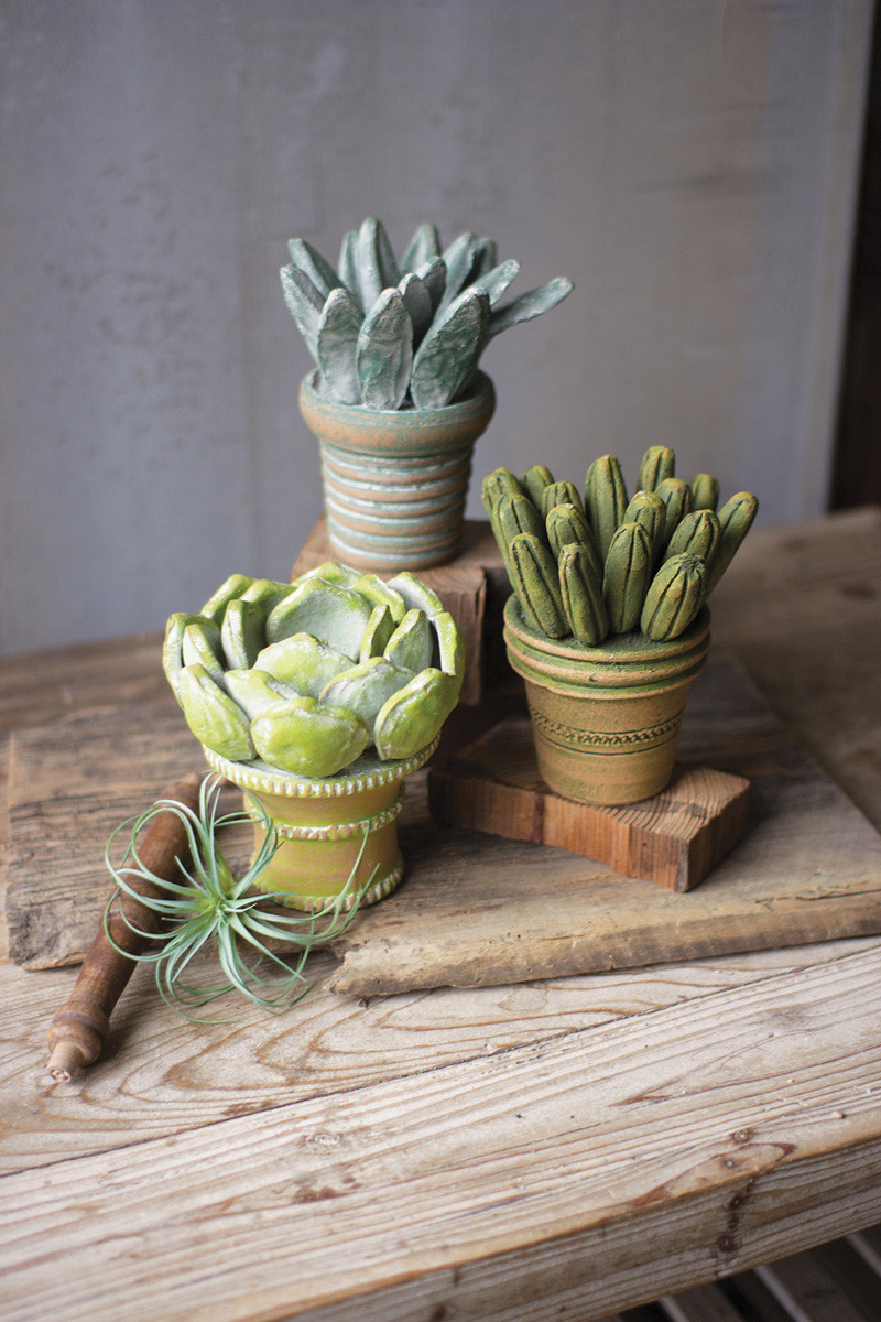 CLAY SUCCULENTS WITH POTS