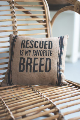 Rescued is My Favorite Breed Pillow